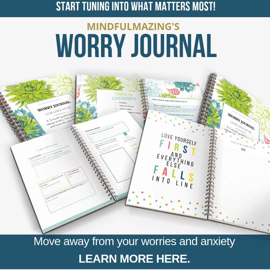 Worry Journal