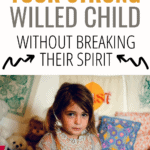 discipline a strong willed child